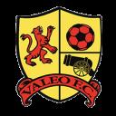 Valeo FC at IberCup